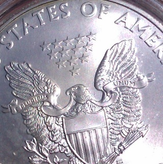Detail 1 troy oz zilveren American Eagle